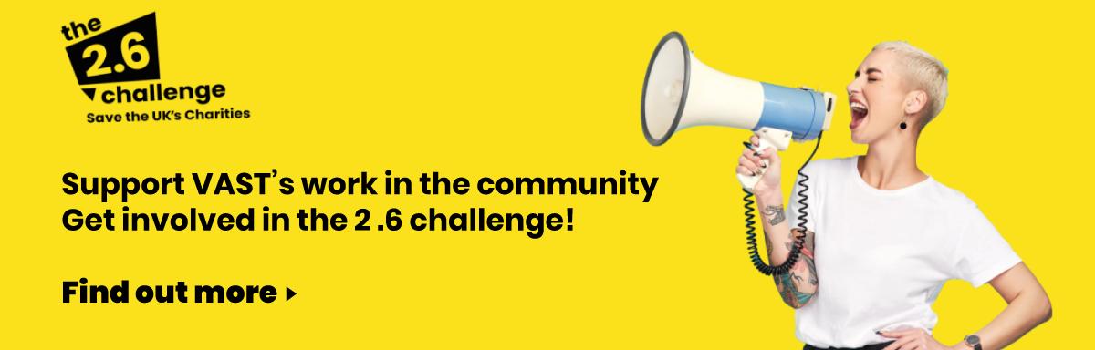 VAST's 2.6 challenge